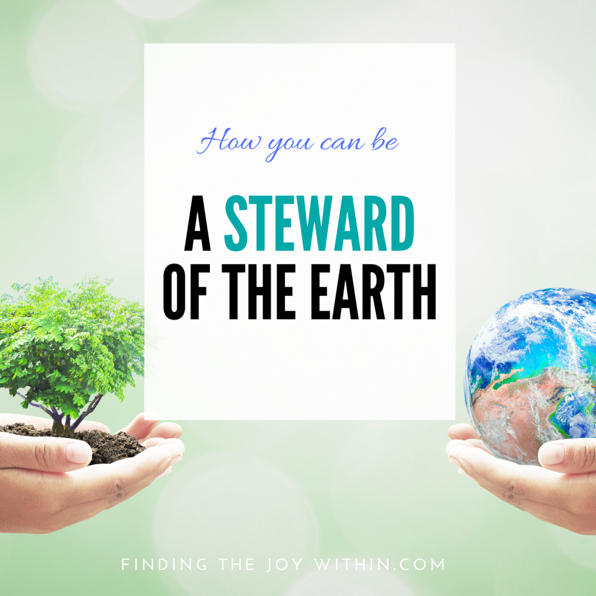 We Are Called To Be Stewards Of The Earth